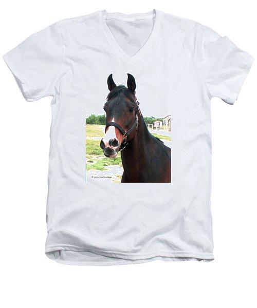 El Ameer Men's V-Neck T-Shirt