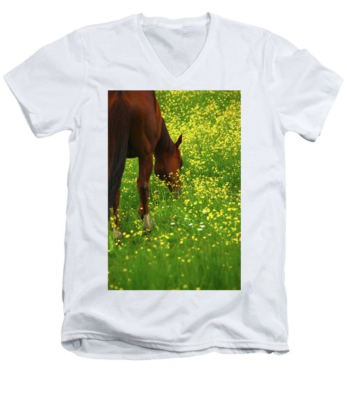 Men's V-Neck T-Shirt featuring the photograph Enjoying The Wildflowers by Karol Livote
