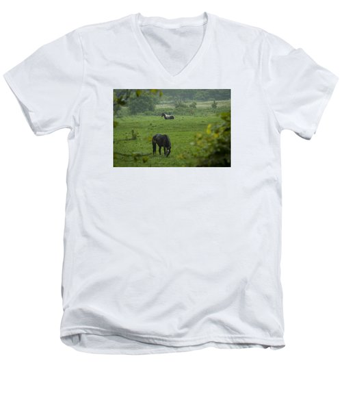 Equine Buddies Men's V-Neck T-Shirt