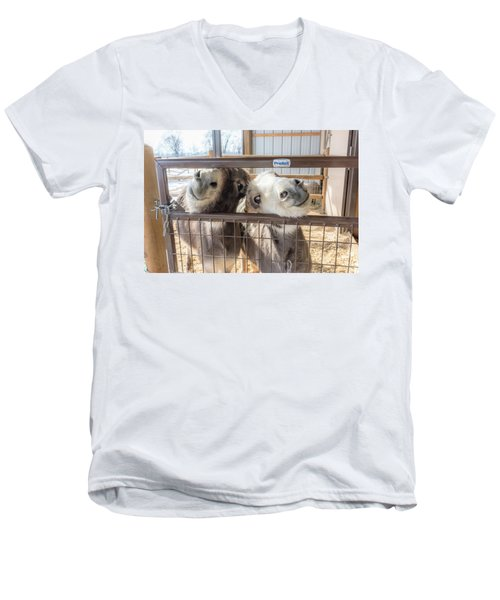 Excited To See Me Men's V-Neck T-Shirt