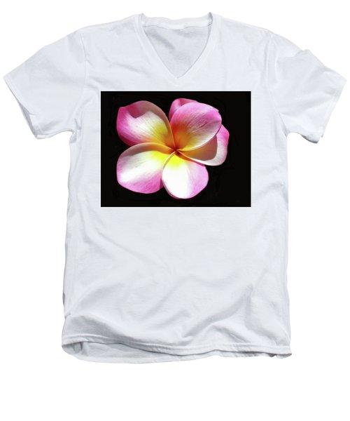 Exotic Plumeria Men's V-Neck T-Shirt