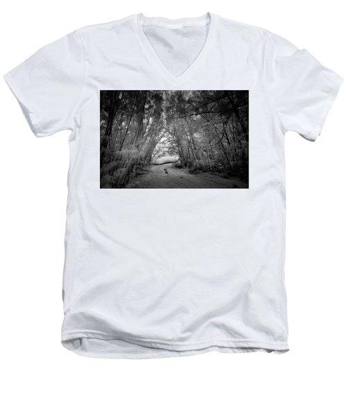 Exploration Men's V-Neck T-Shirt
