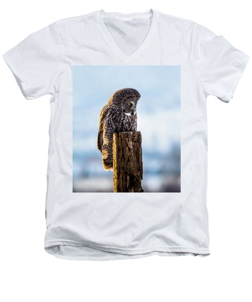 Eye On The Prize - Great Gray Owl Men's V-Neck T-Shirt