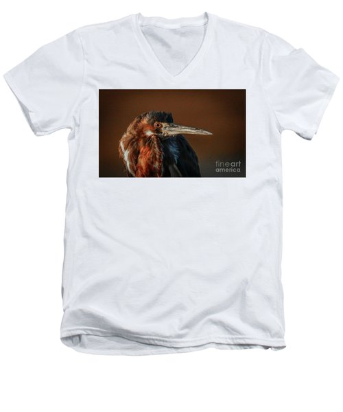 Eye To Eye With Heron Men's V-Neck T-Shirt
