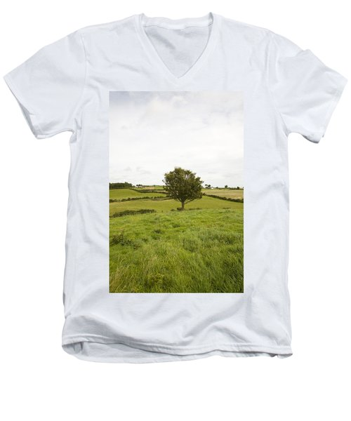 Fairy Tree In Ireland Men's V-Neck T-Shirt