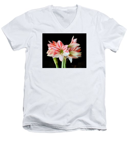 Fairyland Amaryllis  Men's V-Neck T-Shirt