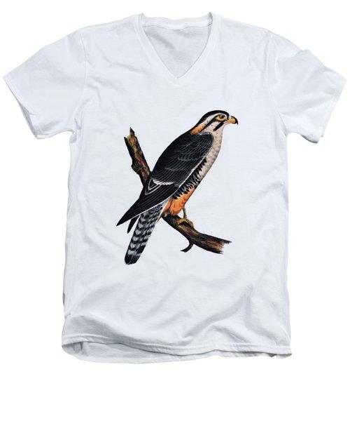 Falcon Aplomado Falcon Men's V-Neck T-Shirt