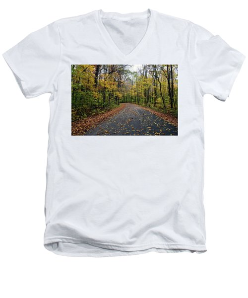 Fall Color Series 2016 Men's V-Neck T-Shirt by Joanne Coyle