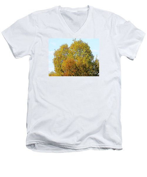 Fall Tree Men's V-Neck T-Shirt by Craig Walters