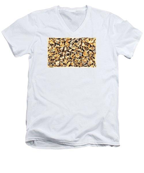 Fallen Autumn Leaves Men's V-Neck T-Shirt