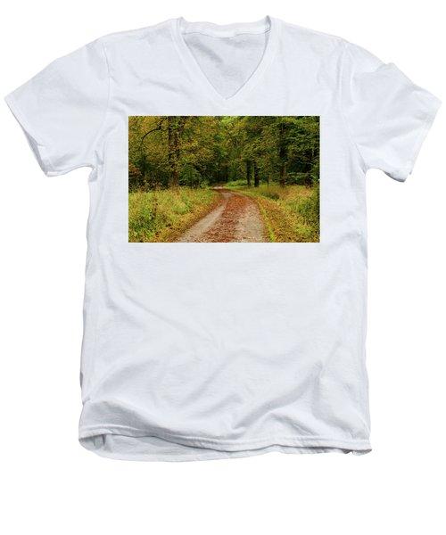 Falling Curves Men's V-Neck T-Shirt