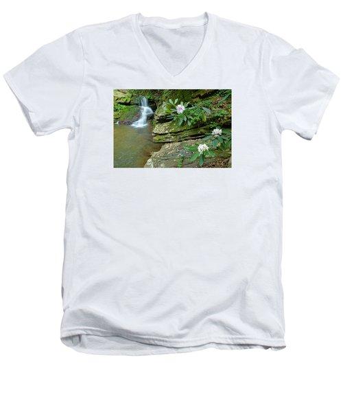 Falls On Catawba Creek Men's V-Neck T-Shirt