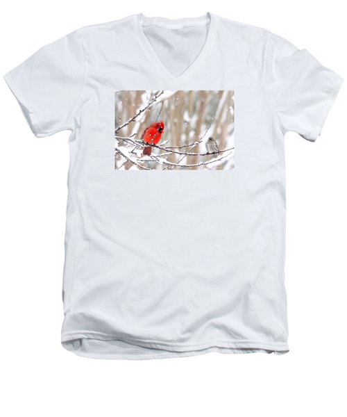 Men's V-Neck T-Shirt featuring the photograph Feathered Friends by Trina Ansel