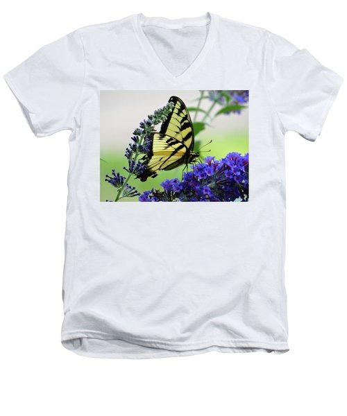 Feeding From A Nectar Plant Men's V-Neck T-Shirt
