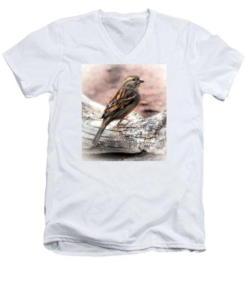 Female Sparrow Men's V-Neck T-Shirt by Elaine Malott