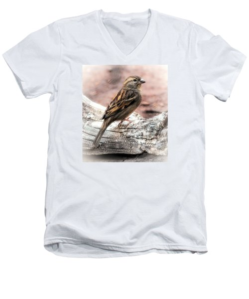 Female Sparrow Men's V-Neck T-Shirt