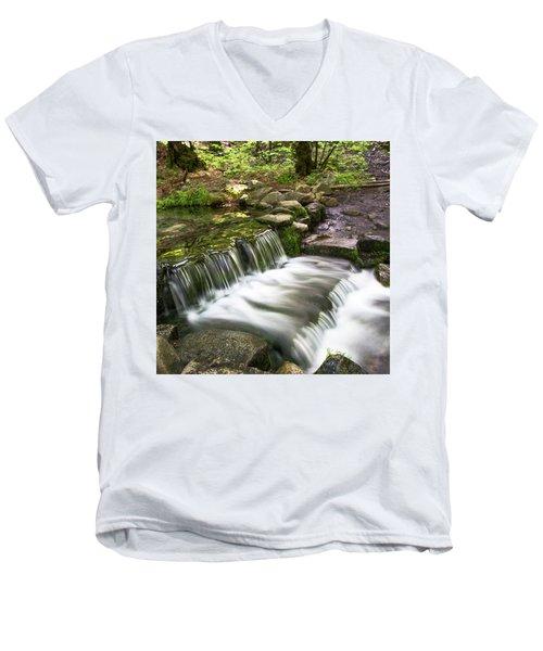 Fern Spring 4 Men's V-Neck T-Shirt by Ryan Weddle