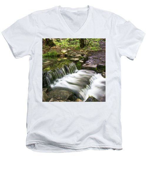 Fern Spring 4 Men's V-Neck T-Shirt