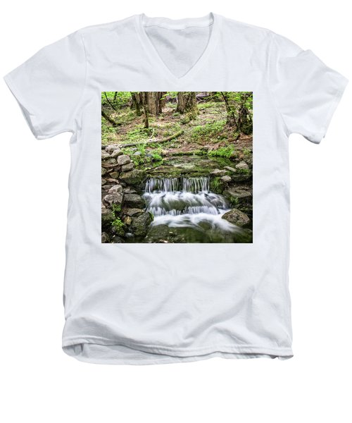 Fern Spring 5 Men's V-Neck T-Shirt by Ryan Weddle