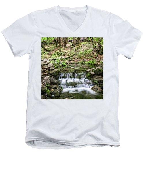 Fern Spring 5 Men's V-Neck T-Shirt
