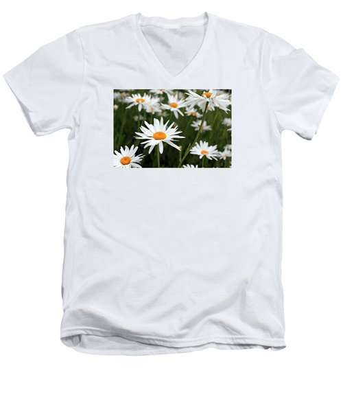 Field Of Daisies Men's V-Neck T-Shirt by Dorothy Cunningham