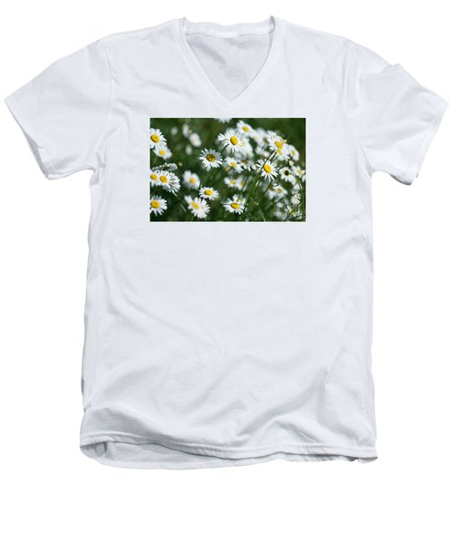 Men's V-Neck T-Shirt featuring the photograph Field Of Daisy's  by Alana Ranney
