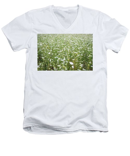 Field Of Queen Annes Lace Men's V-Neck T-Shirt
