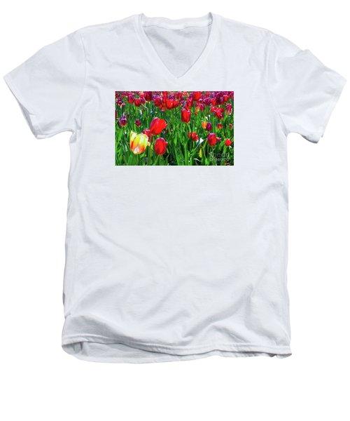 Tulip Garden Men's V-Neck T-Shirt