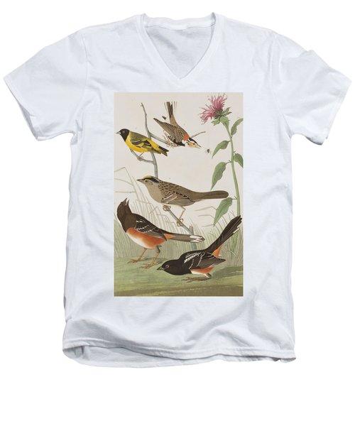 Finches Men's V-Neck T-Shirt