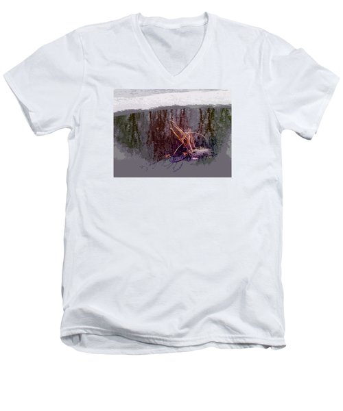 Men's V-Neck T-Shirt featuring the photograph First Freeze by Spyder Webb