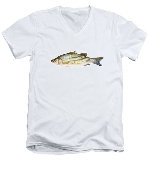 Fish Men's V-Neck T-Shirt