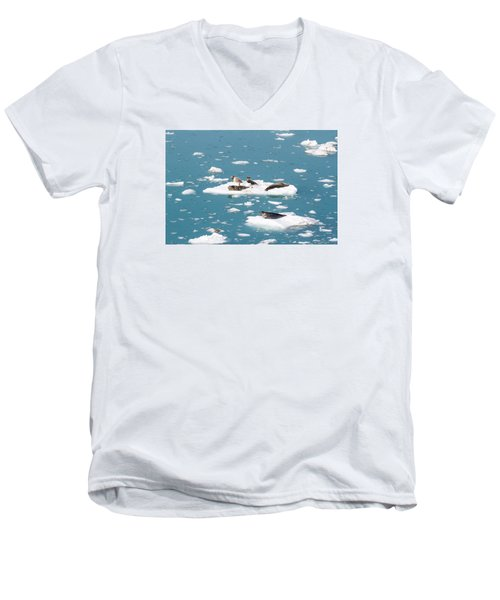 Five Habor Seals On Ice Flows Men's V-Neck T-Shirt by Allan Levin