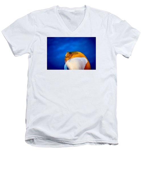 Fla-150811-nd800e-26086-color Men's V-Neck T-Shirt