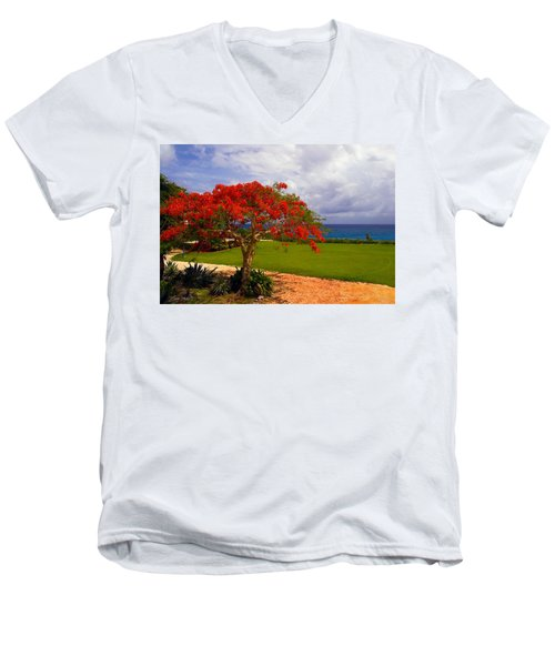 Flamboyant Tree In Grand Cayman Men's V-Neck T-Shirt by Marie Hicks