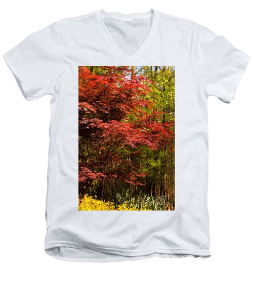 Flame In The Backyard Men's V-Neck T-Shirt by Marilyn Carlyle Greiner