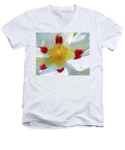 Floral Impressions Men's V-Neck T-Shirt