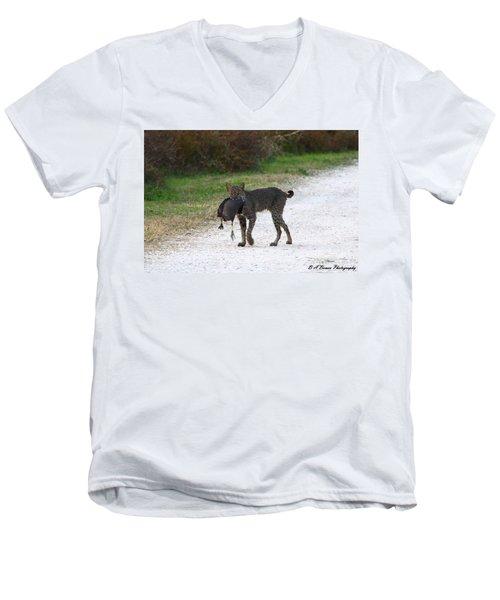 Florida Bobcat Catches An Evening Snack Men's V-Neck T-Shirt