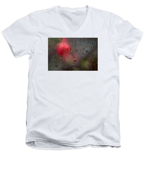 Flower Seen Through The Window Men's V-Neck T-Shirt