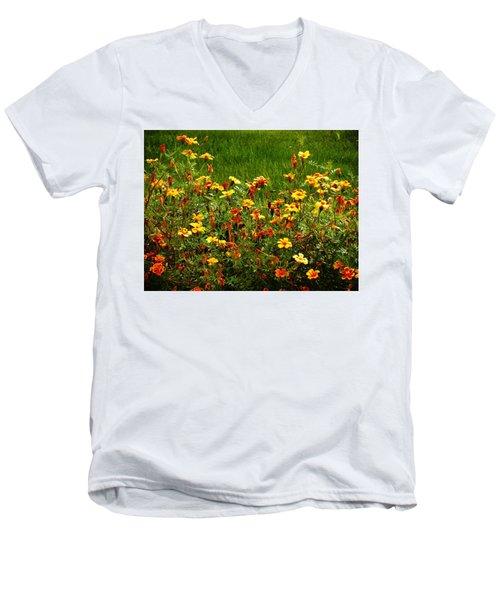 Flowers In The Fields Men's V-Neck T-Shirt by Joseph Frank Baraba