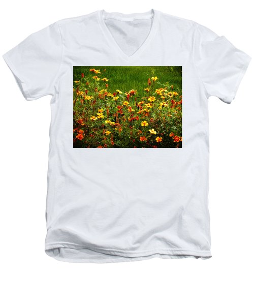 Flowers In The Fields Men's V-Neck T-Shirt