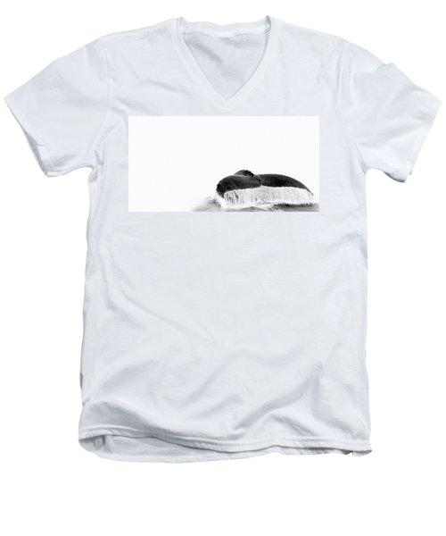 Flute Men's V-Neck T-Shirt