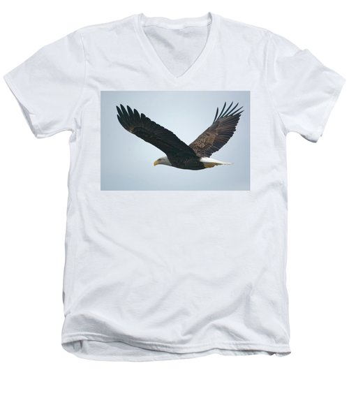 Flying Bald Eagle Men's V-Neck T-Shirt
