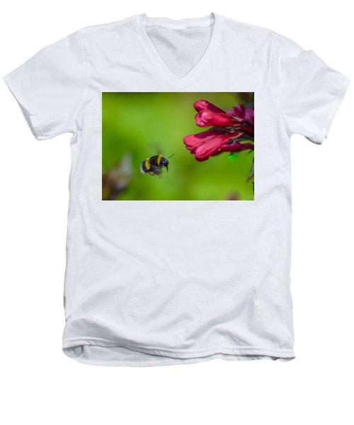 Flying Bumblebee Men's V-Neck T-Shirt by Rainer Kersten