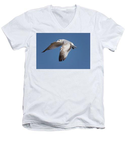 Flying Seagull Men's V-Neck T-Shirt