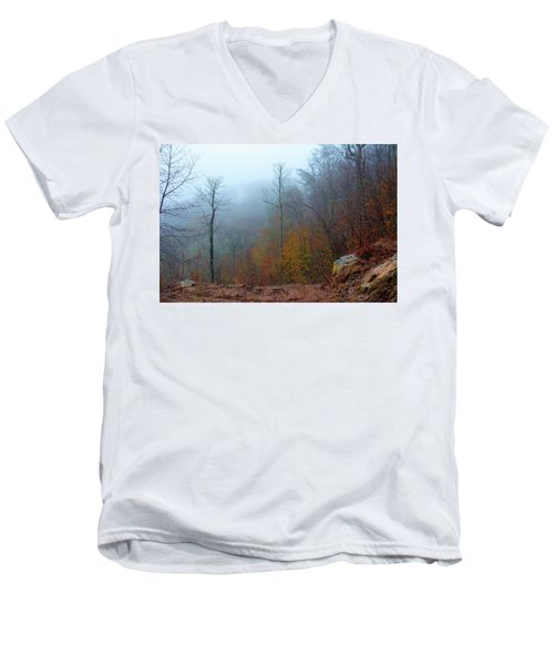 Foggy Nature Men's V-Neck T-Shirt