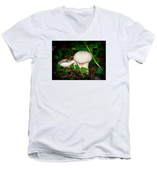 Forest Floor Mushroom Men's V-Neck T-Shirt