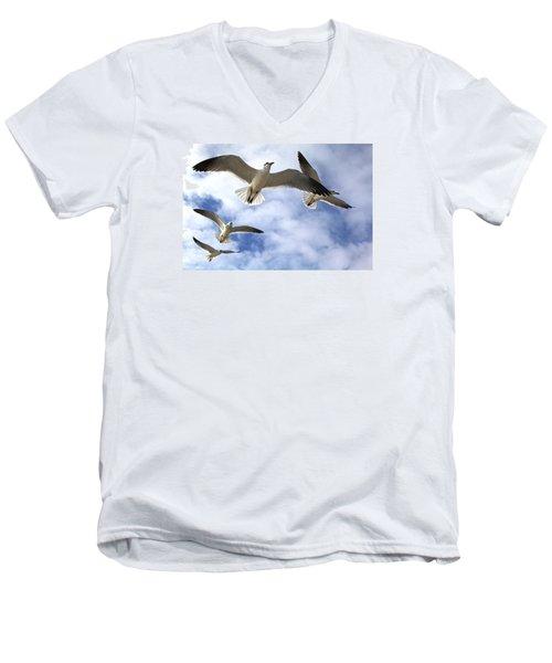 Four Gulls Men's V-Neck T-Shirt by Robert Och
