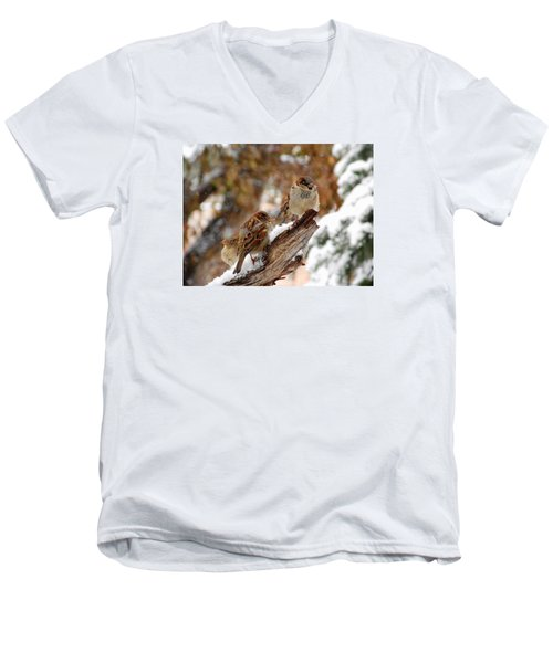 Four Sparrows Men's V-Neck T-Shirt