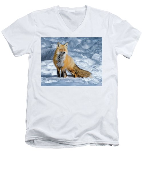 Fox On A Winter Afternoon Men's V-Neck T-Shirt