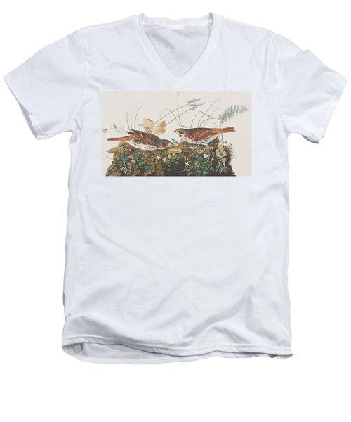 Fox Sparrow Men's V-Neck T-Shirt by John James Audubon